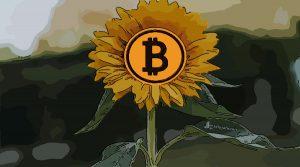 suku bunga bitcoin