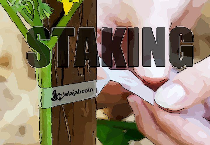 Apa Itu Staking di Dalam Cryptocurrency?
