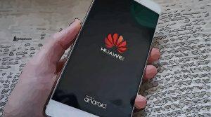 Huawei wallet